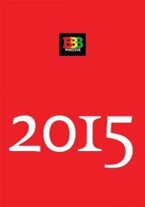 JaarVerslag B3P 2015 Voor